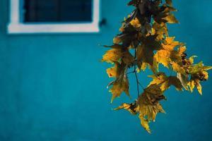 burano - Venezia, färgglada hus foto