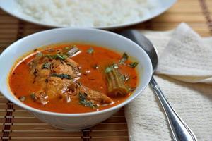 tamilnadu trevally jest fisk curry med vitt ris foto