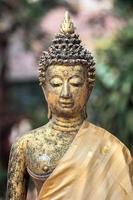 Buddhastaty på wat jet yod, Chiang Mai, Thailand foto