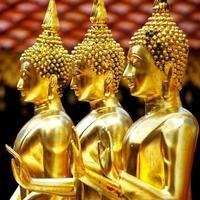 buddha foto