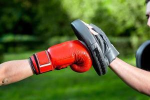 Boxnings handskar foto