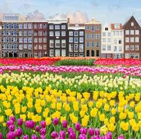gammal amsterdam kanal