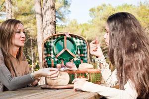 två tjejer pratar under en picknick foto