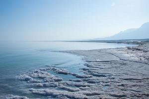 strandlinjen av döda havet foto