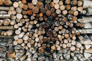 hög med trä stockar foto
