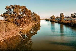 utsikt över floden bredvid höstträd foto