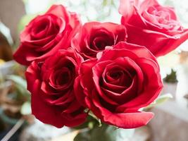 röd rosbukett