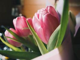närbild av rosa tulpanbukett