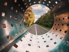 trädkantad väg genom tunneln foto