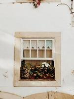 blommor i fönstret foto