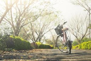 vintage cykel i parken foto