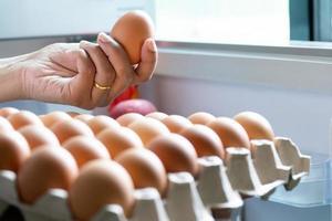 hand som håller ägg foto