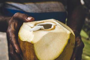 person som håller kokosnöten foto