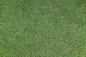 naturligt grönt gräs
