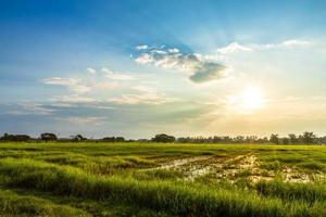 vackert miljölandskap foto