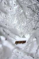 brun bänk täckt med snö foto