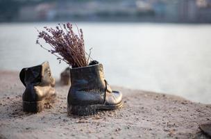 svarta skor med torkade blommor på stranden foto