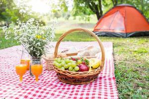 utomhus sommar picknick foto