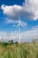 vindkraftverk foto