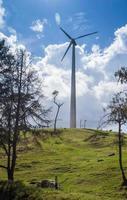 miljö, vindkraftverk foto