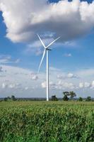 vindkraftverk för alternativ energi på bakgrundshimmel på kassava foto
