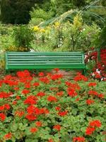 hus och trädgård foto