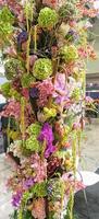 färgglada blommor foto