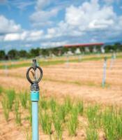 sprinklerbevattning för jordbruksfält i utvecklingsland foto