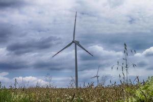 väderkvarnar för förnybar elproduktion i polska pommern foto