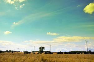 vindkraftpark foto