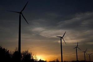 vindkraftverk i solnedgången foto