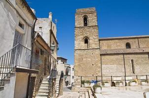 katedralen i acerenza. basilicata. Italien.