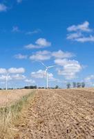 grön energi foto