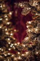närbild av julgranar foto