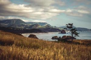 bergskedja och havsstrand på dagtid foto