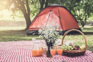 picknick i naturen foto