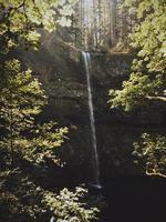 vattenfall omgiven av träd foto