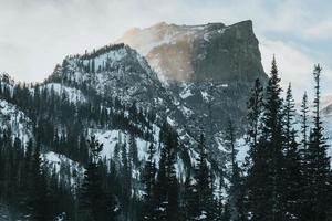 snöig berg och träd foto