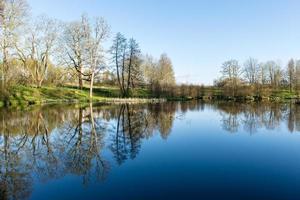 natursköna reflektioner av träd och moln i vatten
