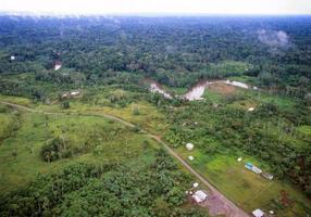 koloniserad amazonisk regnskog foto