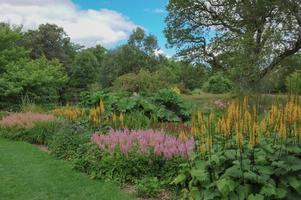 trädgårdar på rosemore, torrington, i devon, england, uk foto