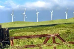 stor ö vindkraftspark foto