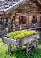 gammal vagn foto