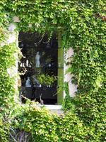 fenêtre vitrée foto