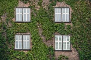 fönster i ett gammalt hus på landet foto