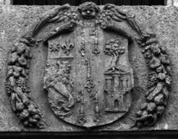 heraldisk sköld foto