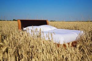 säng i ett sädesfält - begreppet god sömn foto
