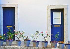 portugisiska hus foto