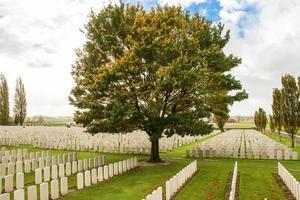 stora världskrig 1 flandern fält belgium kyrkogård foto