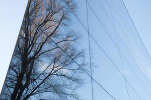 glasfasad och reflektion av träd foto